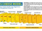 swiss-cheese-model-covid-19.jpg