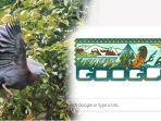 taman-nasional-lorentz-papua.jpg