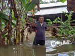 ternak-warga-mati-akibat-terendam-banjir-di-dusun-bingin.jpg
