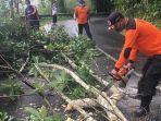 tim-bpbd-kabupaten-badung-saat-melakukan-pembersihan-pohon-tumbang-mn.jpg