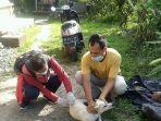 vaksinasi-terhadap-anjing-usai-kasus-gigitan-anjing-rabies-25-maret.jpg