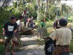 warga-desa-abuan-kauh-desa-susut-ketika-melakukan-gotong-royong-evakuasi-pohon-kelapa.jpg