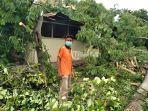warga-yang-rumahnya-tertimpa-pohon-tumbang-akibat-cuaca-buruk.jpg