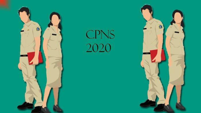 Dianggap Tak Penuhi Persyaratan Kesehatan, Alde CPNS Disabilitas Ini Batal Dilantik Jadi PNS