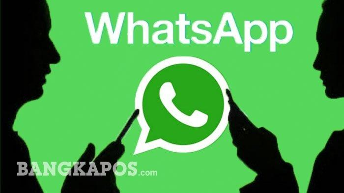 Tanda WhatsApp Dibajak Orang Tak Dikenal Muncul Notifikasi Seperti Ini