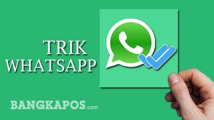 Cuma Modal HP, Kamu Bisa Sadap WhatsApp Seseorang Tanpa Ketahuan, Begini Caranya