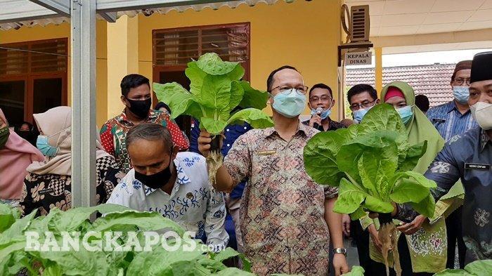Panen Sayur Organik, Bupati Ajak Seluruh Staf Dinas Pertanian Saling Harmonisasi dan Kompak