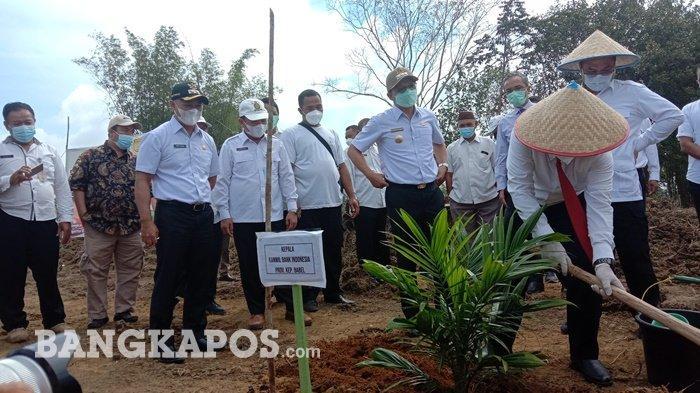Penanaman perdana peremajaan kelapa sawit oleh Kepala Bank Indonesia Kanwil Babel Tantan Heroika, Rabu (10/3/2021)