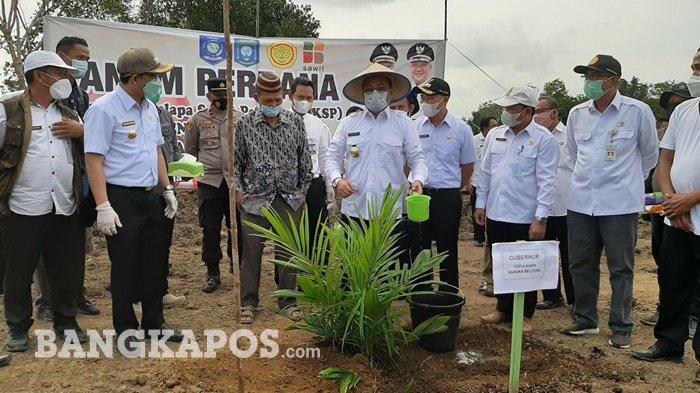 Bupati Bangka Tengah bersama Gubernur Bangka Belitung saat melakukan penanaman perdana kelapa Sawit di Desa Puput, Bangka Tengah Rabu, (10/3/2021).