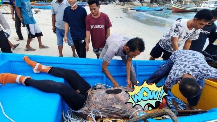 Tercebur ke Laut saat Mencari Ikan, Hendri Ditemukan Tak Bernyawa Mengapung di Air