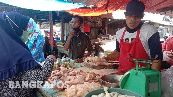 Harga Ayam di Pangkalpinang Naik, Disperindag Ungkap Dua Faktor Penyebab