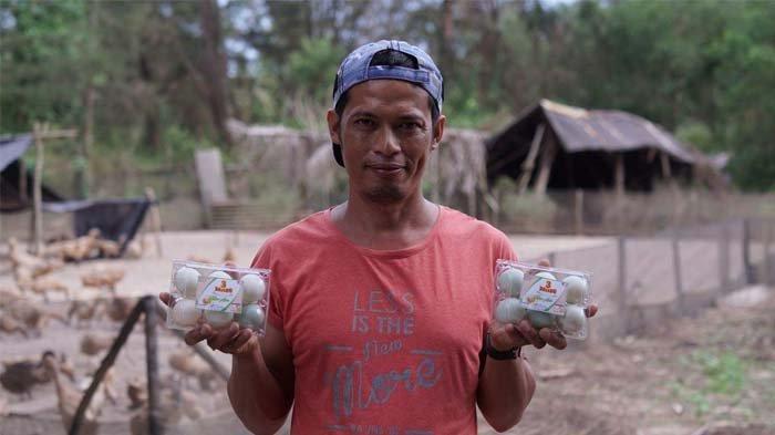 Etrawadi Bersyukur Jadi Mitra Binaan PT Timah, Usaha Peternakan Bebek Berkembang