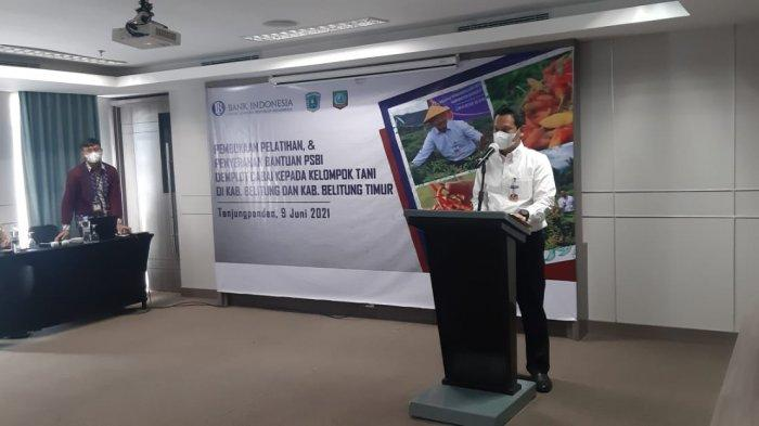 Petani Binaan Bank Indonesia Sukses Panen Raya Cabai