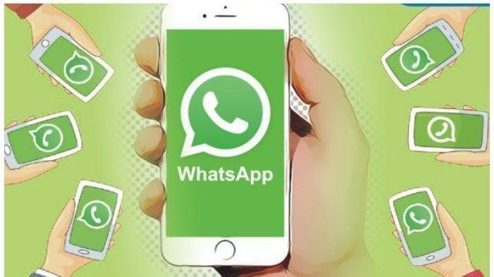 Tak Banyak yang Tahu, ini 6 Cara WhatsApp yang Bermanfaat, Mengetahui Diblokir atau Tidak