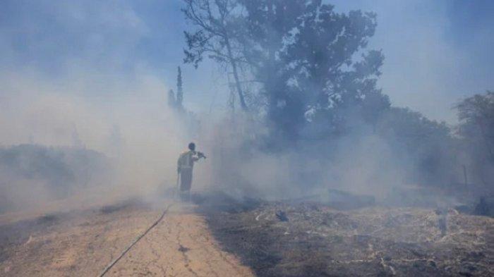 Petugas pemadam kebakaran Israel berusaha memadamkan api di kawasan pertanian seusai serangan balon api dari Jalur Gaza, Kamis (17/6/2021).