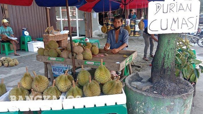 Tak Hanya Durian Tai Babi, Inilah Jenis Durian Bangka yang Lezat Wajib  Anda Coba