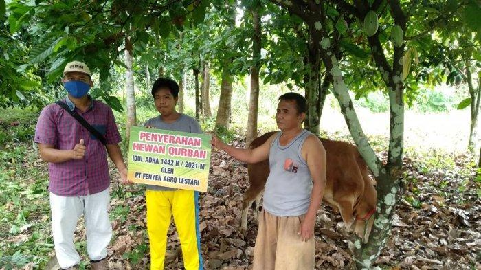 Penyerahan Bantuan CSR Hewan Kurban dari PT Fenyen Agro Lestari di Desa Silip ,Kecamatan Riau Silip Kabupaten Bangka, Sabtu (17/07/2021).