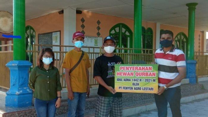 Penyerahan Bantuan CSR Hewan Kurban dari PT Fenyen Agro Lestari di Desa Bukit Layang ,Kecamatan Bakam Kabupaten Bangka, Sabtu (18/07/2021).