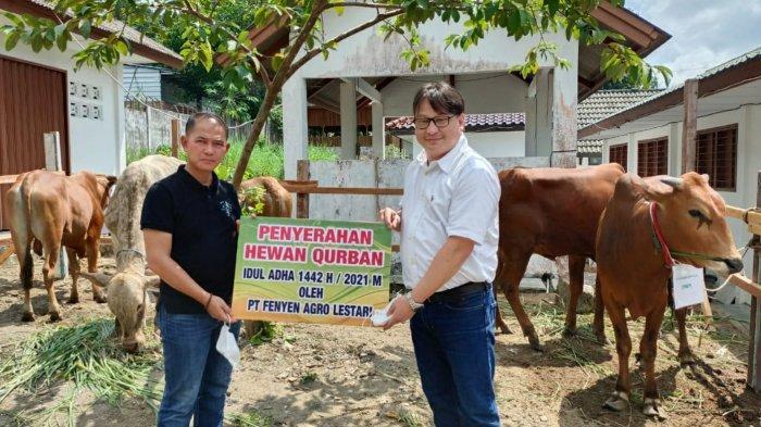 Bentuk Kepedulian PT Fenyen Agro Lestari, Bantuan CSR 9 Sapi Kurban Jelang Idul Adha 1442 Hijriyah