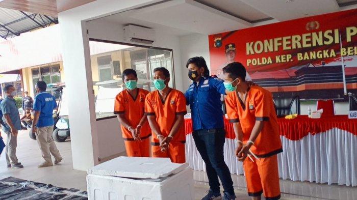 Tiga Saudara Kandung Jadi Tersangka Penyelundupan Baby Lobster Senilai 10 Miliar di Perairan Bangka