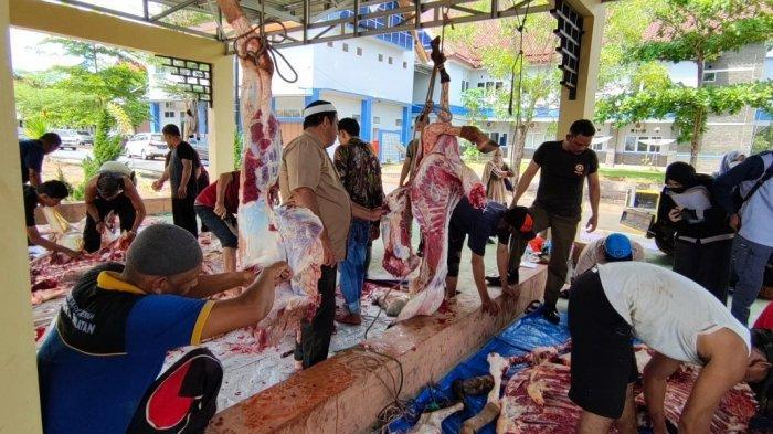 Sekretariat Pemkab dan DPRD Bangka Selatan Potong Hewan Kurban, 400 Kantong Daging Disalurkan