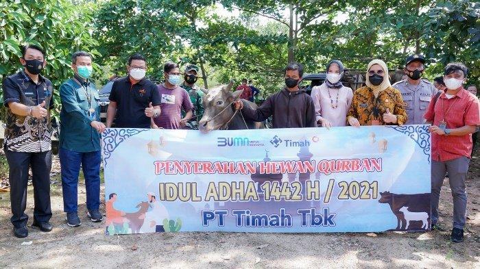 Hari Idul Adha 1442 H, PT Timah Tbk Bagikan 226 Ekor Hewan Kurban di Tiga Provinsi