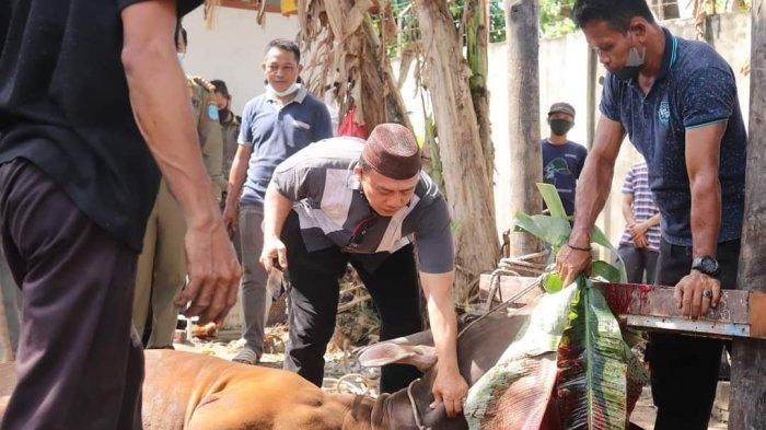 Wakil Bupati Bangka Syahbudin Menyembelih Langsung Hewan Kurban di Rumah Dinas Bupati Bangka, Rabu (21/07/2021)