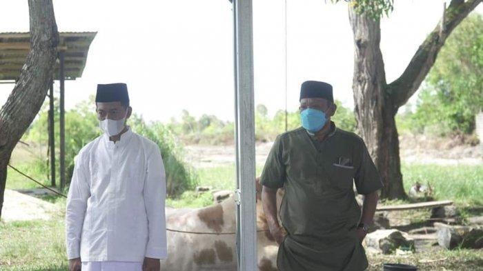 PWNU dan Lazis NU Babel Sinergi dengan DPW PKB Babel Salurkan Ribuan Daging Kurban dan Paket Sembako