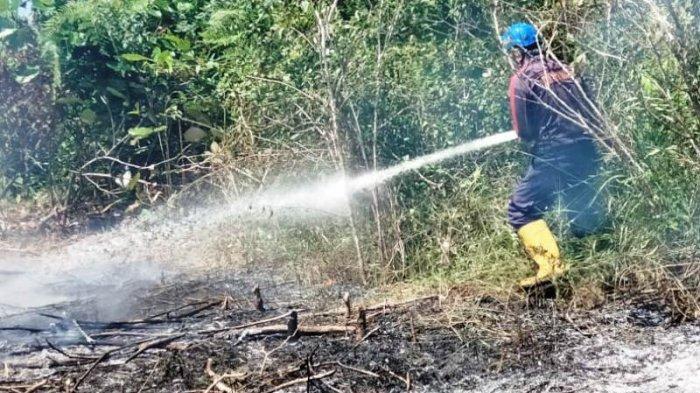 Dua Jam Petugas Padamkan Api di Lahan Kosong di Selindung Akibat Bakar Sampah Sembarangan