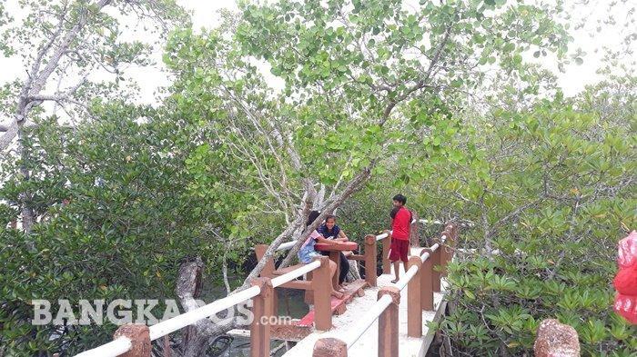 Pokdarwis Mangrove Tukak Tutup Objek Wisata Selama PPKM Level 3