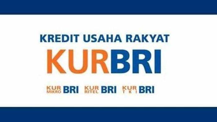 Catat, Panduan Lengkap Pengajuan KUR Pinjaman BRI Rp 100 Juta Tanpa Agunan, Modal KK dan KTP Doang