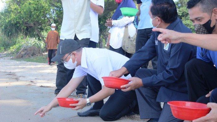 Darmansyah Husein Lepas Tukik di Pantai Desa Guntung, Ajak Manfaatkan Potensi Daerah