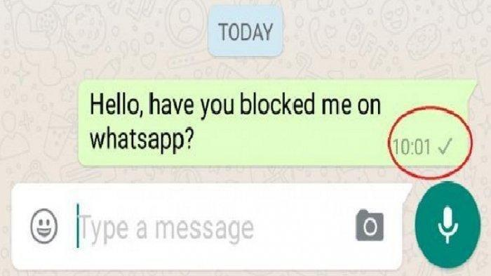 Lapor Nomor Kontak WhatsApp Pakai Fitur Ini Biar Tak Terganggu Kiriman Pesan dan Panggilan Langsung