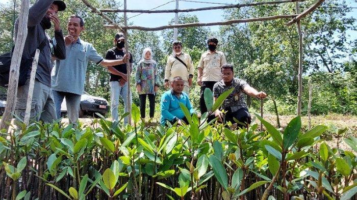 Tim Auditor KLHK RI Cek Langsung Penanaman Mangrove di Desa Batu Betumpang Bangka Selatan