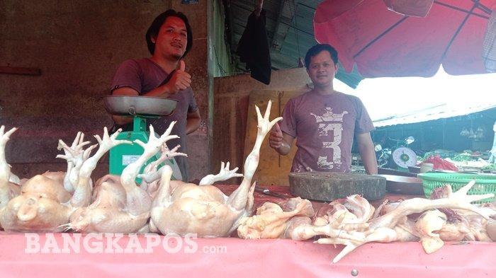 Harga Ayam Potong di Pasar Pangkalpinang Tembus Rp40.000 Per Kilogram, Ini Penyebabnya