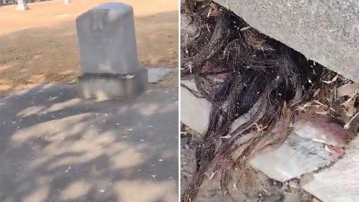 Terungkap Asal Rambut yang Keluar dari Kuburan hingga Videonya Viral, Faktanya Buat Miris