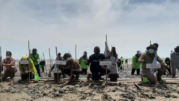 Desa Kurau Jadi Contoh Lokasi Percepatan Rehabilitasi Mangrove di Bangka Belitung