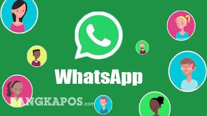 FITUR-fitur Baru WhatsApp dan Cara Mudah Menggunakannya Termasuk Video Call 50 Orang