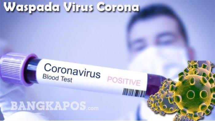 Fakta Lengkap Wanita Asal Indonesia Positif Virus Corona Padahal Tidak ke China