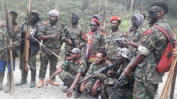 Ngotot Bela KKB Papua Bukan Teroris Karena Alasan HAM, Usmad Hamid Terbantahkan Data Mahfud MD