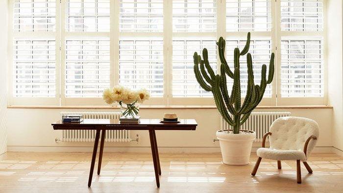 8 TIPS Sederhana agar Rumah Minim Jendela Bermandikan Cahaya Alami