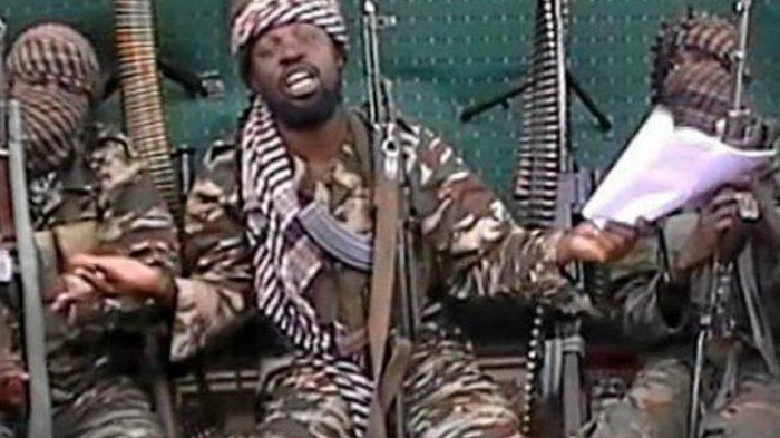 Pasukan Khusus Nigeria 'Lenyapkan' 33 Anggota Boko Haram di Borno