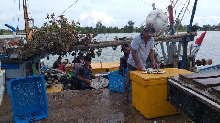 Angin Kencang, Nelayan Sedikit Dapatkan Ikan