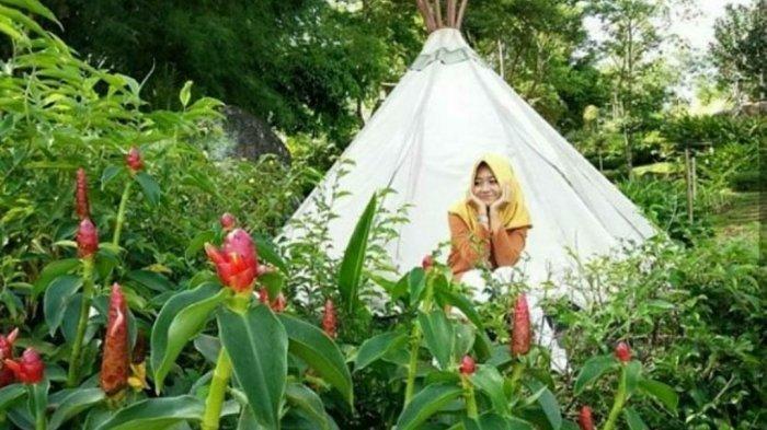 Wisata Lampung - Sejuknya Alam Wawai, Ramah Lingkungan Cocok Untuk Berakhir Pekan