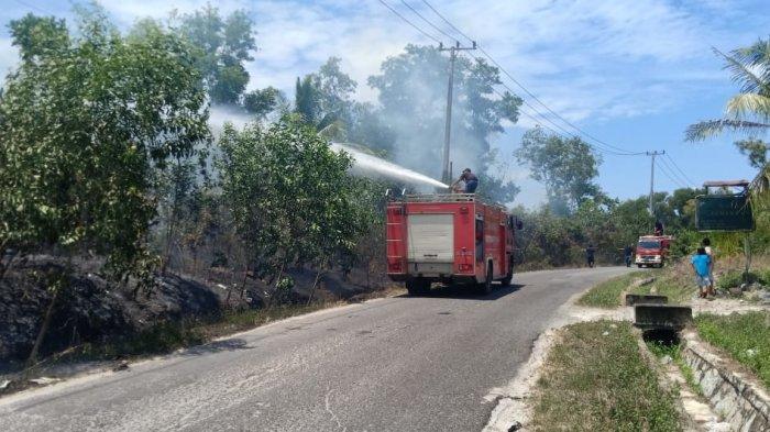 Soal Kebakaran Lahan di Jl Cut Nyak Dien Sungailiat, Diduga Ada yang Iseng
