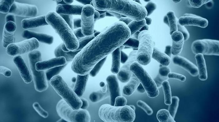 Gawat Bakteri Penyakit Biofarmasi di China Bocor, Ribuan Warga Terinfeksi, Gejala Demam, Nyeri Sendi