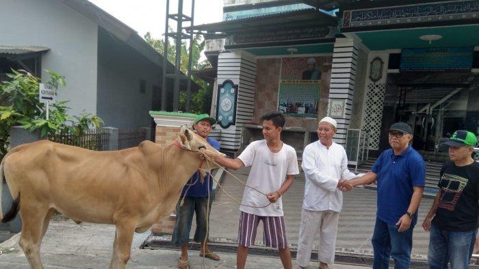 Waktu Penyembelihan Hewan Kurban Idul Adha, Setelah Sholat Id Hingga 13 Dzulhijjah