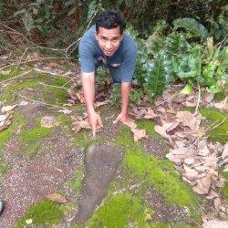 Destinasi Wisata Batu Belimbing dan jejak telapak kaki Akek Antak di Desa Puput Kecamatan Simpang Katis, Kabupaten Bangka Tengah.
