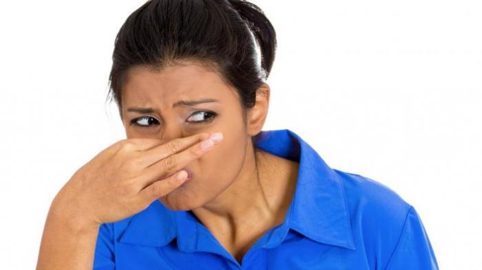 Warga Belilik dan Kurau Keluhkan Aroma Busuk, Kades Sudah 2 Kali Surati Perusahaan Sawit