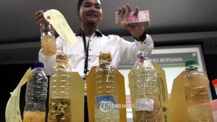Polri Ungkap Penyelundupan 23 Ribu Benih Lobster ke LP Tangerang, Sayang Kasusnya Tenggelam